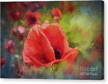 Summer Red Canvas Print by Jutta Maria Pusl