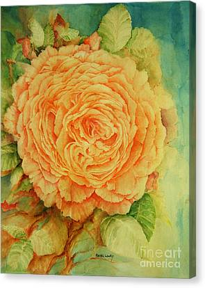 Summer Rose Canvas Print by Rachel Lowry