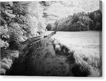 Summer Salt Marsh - Wells Maine Canvas Print by Luke Moore