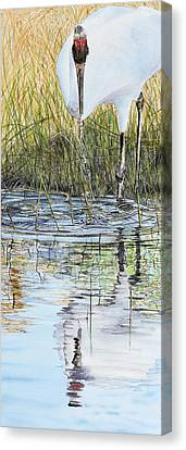 Summer Shallows Canvas Print by Vicky Lilla