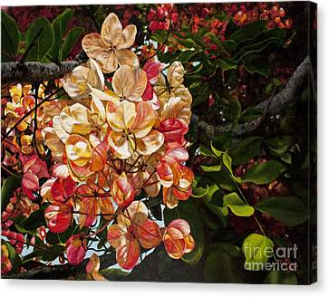 Summer Shower Tree Canvas Print by Pati O'Neal