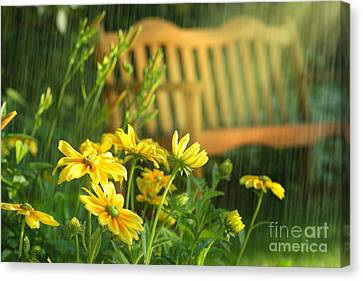 Summer Showers Canvas Print by Sandra Cunningham