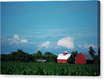 Summer Sky Summer Farm Canvas Print by Jame Hayes