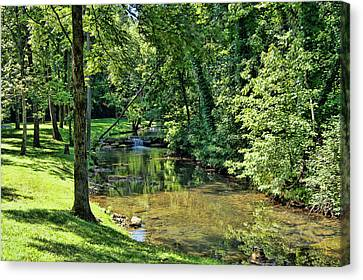 Canvas Print featuring the photograph Summer Stream by Cricket Hackmann