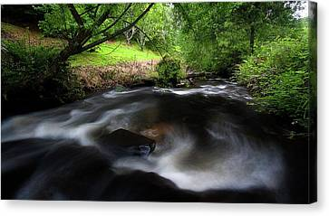 Canvas Print featuring the photograph Summer Stream by Tim Nichols