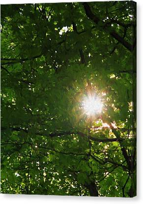 Summer Sun Canvas Print by Dan Sproul