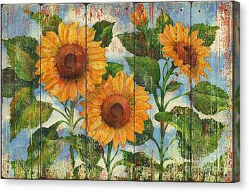 Summer Sunflowers Distressed Canvas Print by Paul Brent