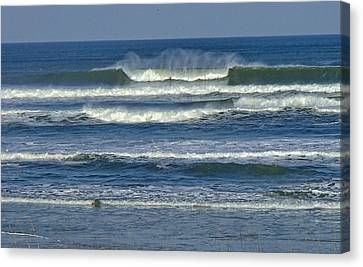 Surfing Magazine Canvas Print - Summer Swell by Donna Cain