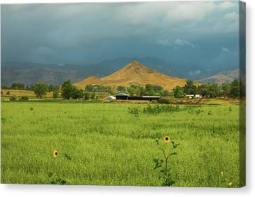 Canvas Print featuring the photograph Summer View Of  Hay Stack Mountain by James BO Insogna