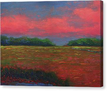 Summer Wetlands - Outlet Canvas Print by Vernon Reinike