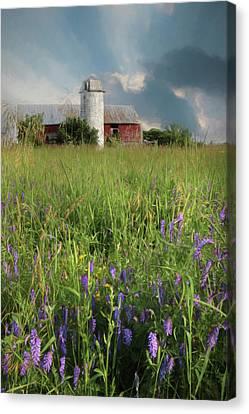 Summer Wildflowers Canvas Print by Lori Deiter