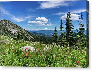 Summer Wildflowers On Big White Canvas Print