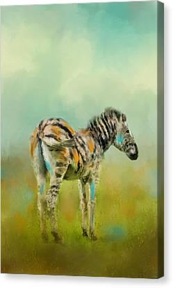 Summer Zebra 1 Canvas Print by Jai Johnson