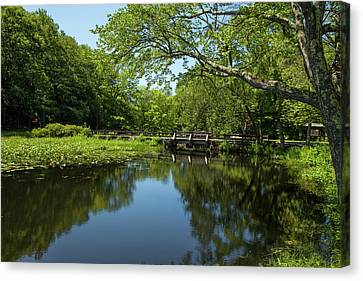Canvas Print - Summers Quiet by Karol Livote