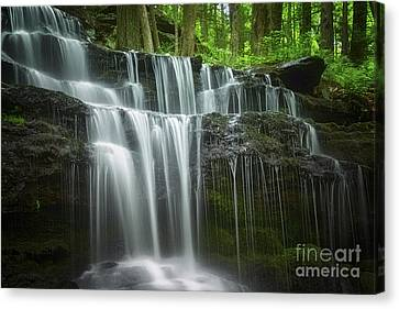 Western Ma Canvas Print - Summertime At Gunn Brook Falls by Mary Lou Chmura