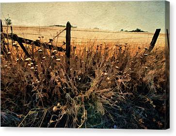 Canvas Print featuring the photograph Summertime Country Fence by Steve Siri