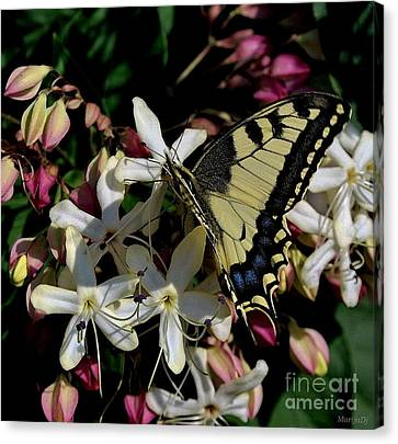 Canvas Print featuring the photograph Summertime by Marija Djedovic