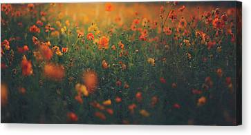 Canvas Print featuring the photograph Summertime by Shane Holsclaw