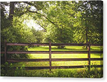 Canvas Print featuring the photograph Summertime Sunshine by Shelby Young