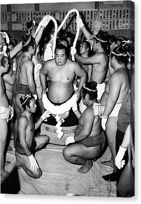 Sumo Wrestlers In Japan. Ca 1950s Canvas Print by Everett