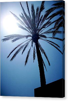 Sun And Palm Canvas Print by Marina Owens