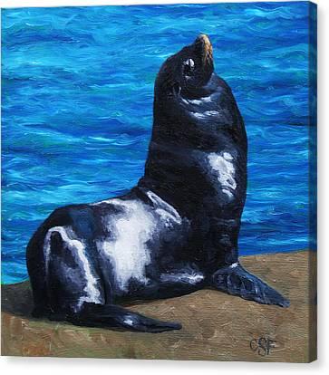 Sun Bathing Sea Lion Canvas Print by Crista Forest