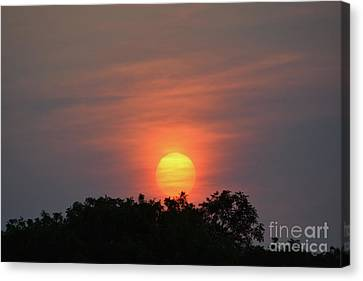 Sun Coming Up  Canvas Print by Ruth Housley
