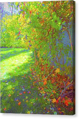 Sun Dappled - Early Autumn Canvas Print