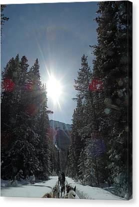 Sun Dogs Canvas Print