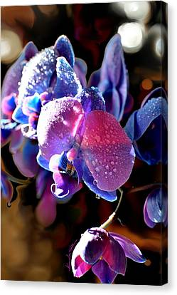 Pinks And Purple Petals Canvas Print - Sun Drenched Orchid by Hanne Lore Koehler