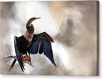 Sun-dried Canvas Print by Cyndy Doty
