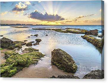 Sun Explosion In Boca Cangrejos Canvas Print by Ernesto Ruiz