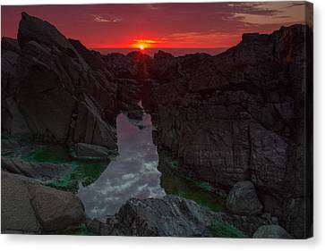 Sun Flare Canvas Print by William Sanger