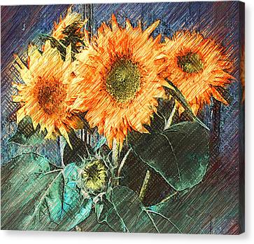 Sun Flowers On Wall Canvas Print by Yury Malkov