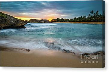 Sun Glowing Canvas Print by Ernesto Ruiz