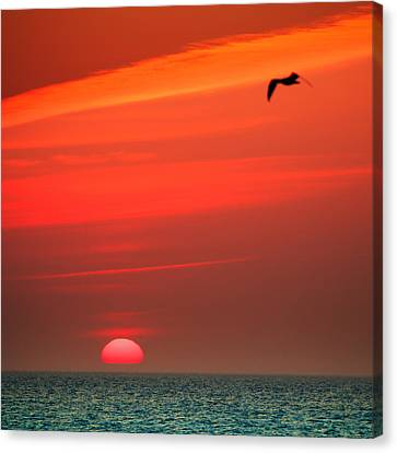 Sun Is Up Canvas Print by Dapixara Art
