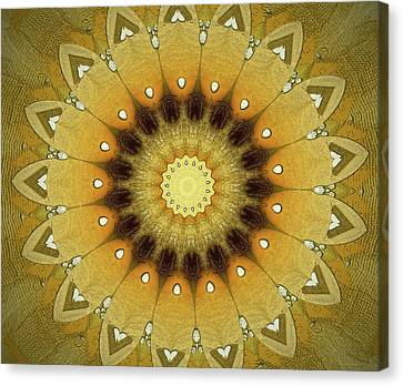 Relief Canvas Print - Sun Kaleidoscope by Wim Lanclus