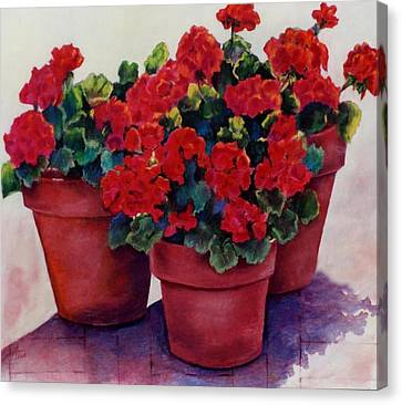Canvas Print featuring the painting Sun-kissed Geraniums by Ann Peck