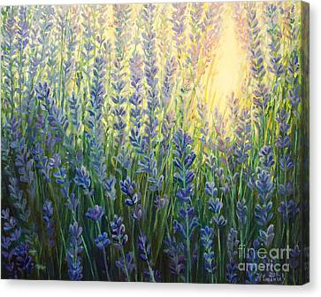 Sun Nuance Canvas Print by Kiril Stanchev
