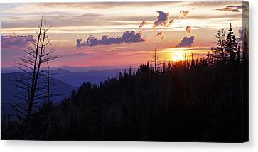 Sun Over Cedar Canvas Print