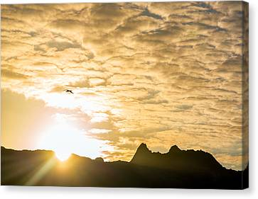 Sun Over Hills In Galapagos Canvas Print by Jess Kraft