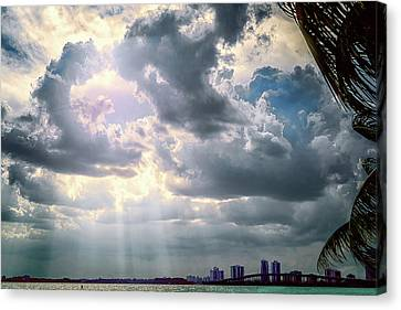 Flowers Miami Canvas Print - Sun Rays Over Miami by Camille Lopez