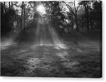 Sun Rays Though Fog Canvas Print by Sven Brogren