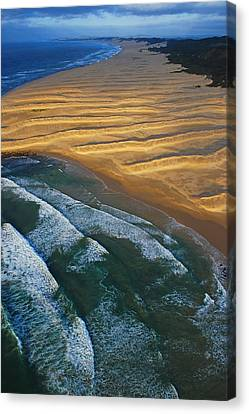 Sun Rise Coast  Canvas Print by Skip Hunt