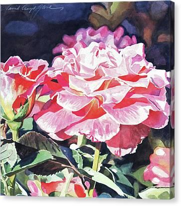 Canvas Print - Sun Rose by David Lloyd Glover