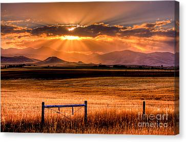 Sun Sets On Summer Canvas Print by Katie LaSalle-Lowery