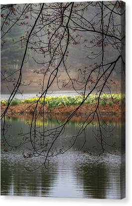 Canvas Print featuring the photograph Sun Shower by Bill Wakeley