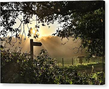 Canvas Print featuring the photograph Sun Sign by RKAB Works