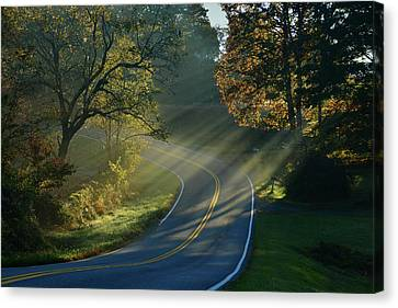 Sun-up On Conners Grove Canvas Print