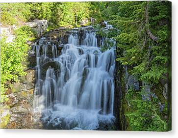 Sunbeam Creek Mt Rainier Canvas Print by Sam Amato